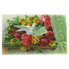 Best Wishes Dove Postcard/Roses and Daisies