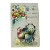 Thanksgiving Postcard / Turkey / Fruit Display / Vintage Ephemera