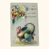 Thanksgiving Postcard / Turkey / Fruit Display / Vintage Ephemera