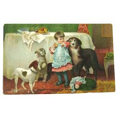 Charity Begins at Home Postcard / Girl with Dogs / Doll