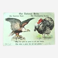 Our National Birds Postcard / American Eagle / Thanksgiving Turkey
