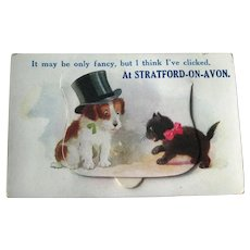 Rare Pocket Novelty Postcard / Cat and Dog / Stratford on Avon