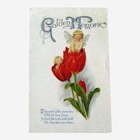 Winsch Fairies Postcard / Fairies in Tulips / Golden Memories
