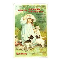 Hoyt's German Cologne / Victorian Trade Card / Advertising Trade Card