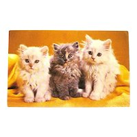 Three Little Kittens Postcard / Vintage Cats Card / Cat Lovers Postcard