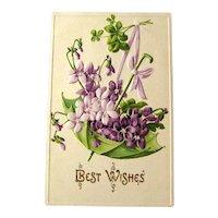 Unused Postcard with Umbrella and Violets / Unused Vintage Postcard / Best Wishes