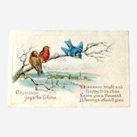 Christmas Joy Postcard / Colorful Birds / Church Scene / Vintage Ephemera
