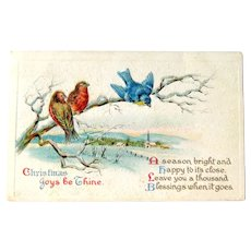 Christmas Joy Postcard / Colorful Birds / Church Scene / Vintage Ephemera