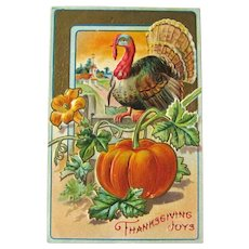 Thanksgiving Joys Postcard / Turkey / Pumpkin Patch / Vintage Ephemera