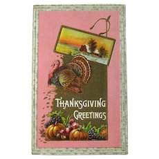 Vintage Thanksgiving Postcard - Pink Background - Turkey and Fruit -Collectible Postcard