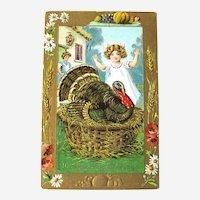 B Hofmann Vintage Thanksgiving Postcard - Turkey in Basket - 1909 Postcard - Postcard Collection