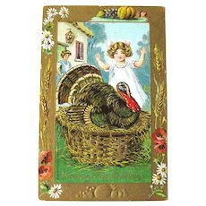 B Hofmann Vintage Thanksgiving Postcard - Turkey in Basket - 1909 Postcard - Postcard Collection