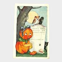 RARE Whitney Pumpkin Girl Halloween Postcard - Crow Owl Black Cat and Spider - Collectible Halloween