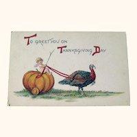 Thanksgiving Postcard Cherub Riding Pumpkin - Turkey Pulling Pumpkin - Collectible Postcard