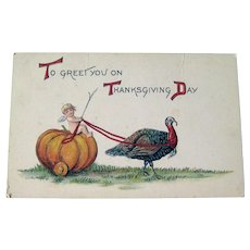 Thanksgiving Postcard Cherub Riding Pumpkin - Turkey Pulling Pumpkin - Collectible Postcard
