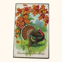 Vintage Thanksgiving Postcard - Thanksgiving Greetings - Collectible Postcard
