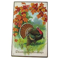 Vintage Thanksgiving Postcard - Thanksgiving Greetings - Collectible Postcard