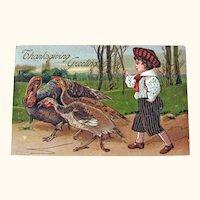 Vintage Thanksgiving Postcard - Boy Herding Turkeys - Collectible Postcard