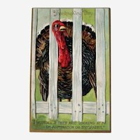 Vintage Tuck Thanksgiving Postcard - Tuck Comic Series - Turkey Behind Fence