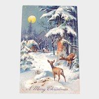 Vintage Christmas Postcard - Pastoral Scene with Deer - Collectible Postcard
