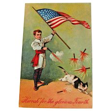 Vintage 4th of July Postcard - Boy Shooting Off Fireworks - Scared Cat