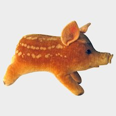 Vintage Steiff Velvet Pig Baby Boar -Steiff Pig Felt Ears and Nose - Collectible Steiff - No Tags