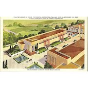 Postcard of Poultry Group at the Texas Centennial Exposition, Dallas, Texas