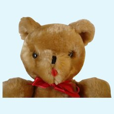 Musical Teddy Bear Vintage Eden Toys Glass Eyes Stitched Nose