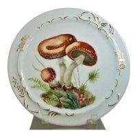 Wild Mushrooms Hand Painted Plate Artist Signed C Becker
