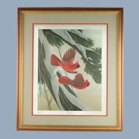 Vintage John Ruthven Signed and Numbered Framed Limited Edition Songbird Series Cardinal Richmondena Cardinalis