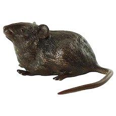 Antique Vienna Bronze Field Mouse Life Size Geschutzt Depose 1064