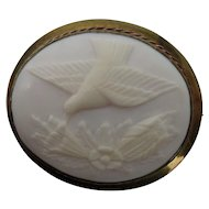 Antique Angel Skin Coral Hummingbird Cameo Pin Pendant