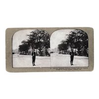 7th Infantry Regiment Los Angeles California National Guard Stereo View Card