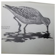Lemuel T. (Lem) Ward Original Pencil Sketch Dowitcher Shorebird Signed