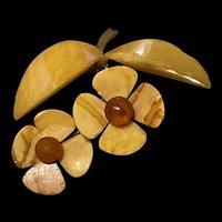 Fabulous Vintage Baltic Butterscotch Daisy Flower Brooch