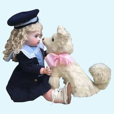 """Adorable Antique Spitz, Pomeranian Dog CANDY CONTAINER for French Bebe or Large Fashion Poupee Display. 9.5"""""""