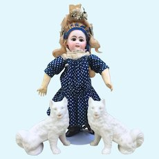 Lovely Pair of Antique Bisque Pomeranian Dogs for your French Bebe or Fashion Poupee Display