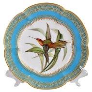 Coalport dessert plate, humming bird by John Randall, ca 1870