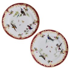 Coalport set of 2 small plates, humming birds by John Randall, ca 1865