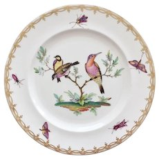 Coalport cabinet plate, birds and insects, ca 1880