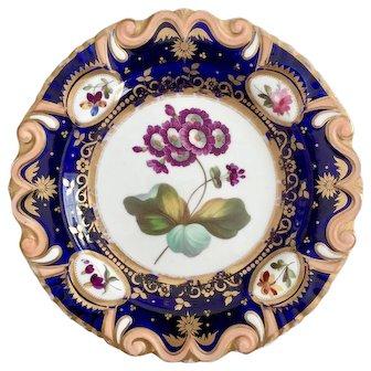 Ridgway dessert plate, moustache shape with flower study patt. 848, ca 1825