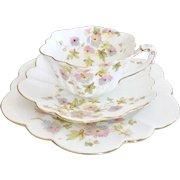Charles Wileman teacup trio, Chrysanthemum on Empire shape patt. 5701, 1896