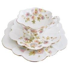 Wileman teacup trio, Chrysanthemum on Empire shape patt 5701, 1896