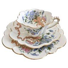 Wileman teacup trio, polychrome Daisy Sprays patt. 5066 on Empire shape, 1893