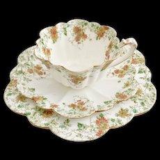 Wileman teacup trio, trailing violets patt 6948 on Empire shape, 1896