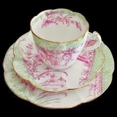 Antique Charles Wileman teacup trio, Kensington patt 5029 on Lily shape, 1893