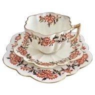Wileman teacup trio, Daisy Wreath patt 6071 on Daisy shape, 1890