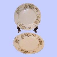 "SET of 2:  Antique Dresden Hopfen 6 7/8"" Dessert Plates by Alfred Meakin of England"