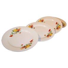 """Set of 4: Homer Laughlin Poppy & Rose 7 1/4""""  Plates"""