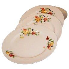 """SET of 4: Homer Laughlin Kwaker Poppy & Rose 9"""" Dinner Plates"""
